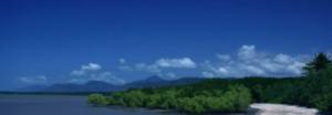 the code series 2 scenery